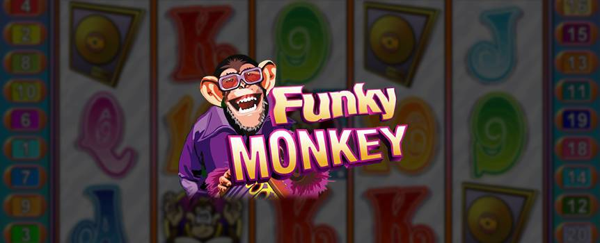 Transport yourself to the swinging 60s, where if you'd seen a group of chimps playing musical instruments, you'd probably just think it was a flashback. With Funky Monkey though, these cheeky chimps are for real. This psychedelic slot features Funky Monkey and his crew performing in a band, as well as some great combinations that could be music to your ears.
