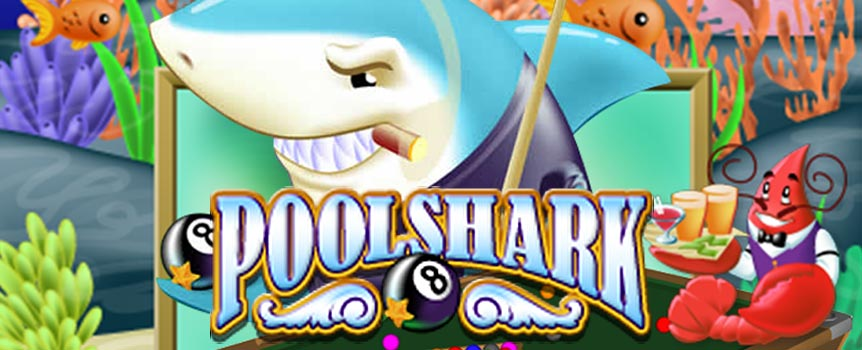 Pool shark refers to a great pool player involved in hustling. Befittingly in this game for one of the most notorious predators in the world, the shark symbol is the Wild symbol. The shark can only attack the reels 2, 3 or 4 and when he makes his appearance, he substitutes for all other symbols, apart from the Scatter symbol. That is not all, as the shark also doubles your prize when he forms part of a winning combination!