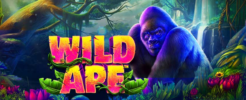Prepare for a wild jungle adventure. Swing into action on this colourful 5-reel slot, which comes with eye-popping graphics and is packed full of features. During Free Spins and Wild Ape Respins, the reels are extended to add an extra row of symbols and the number of lines is doubled from 20 to 40 create epic wins.