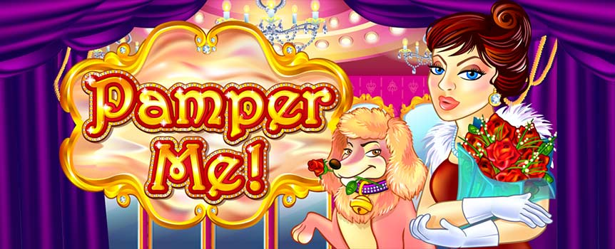 Cute girly design with shopping bags, well-groomed dogs and lipstick on the reels -- the colours of Pamper Me are energetic, and the layout is clear and simple. There are 25 paylines which present you with great winning opportunities in a Slot that comes in a traditional 5x3 setup and some interesting bonuses. In the paytable you will find symbols of different values as well as Wilds and Scatters.
